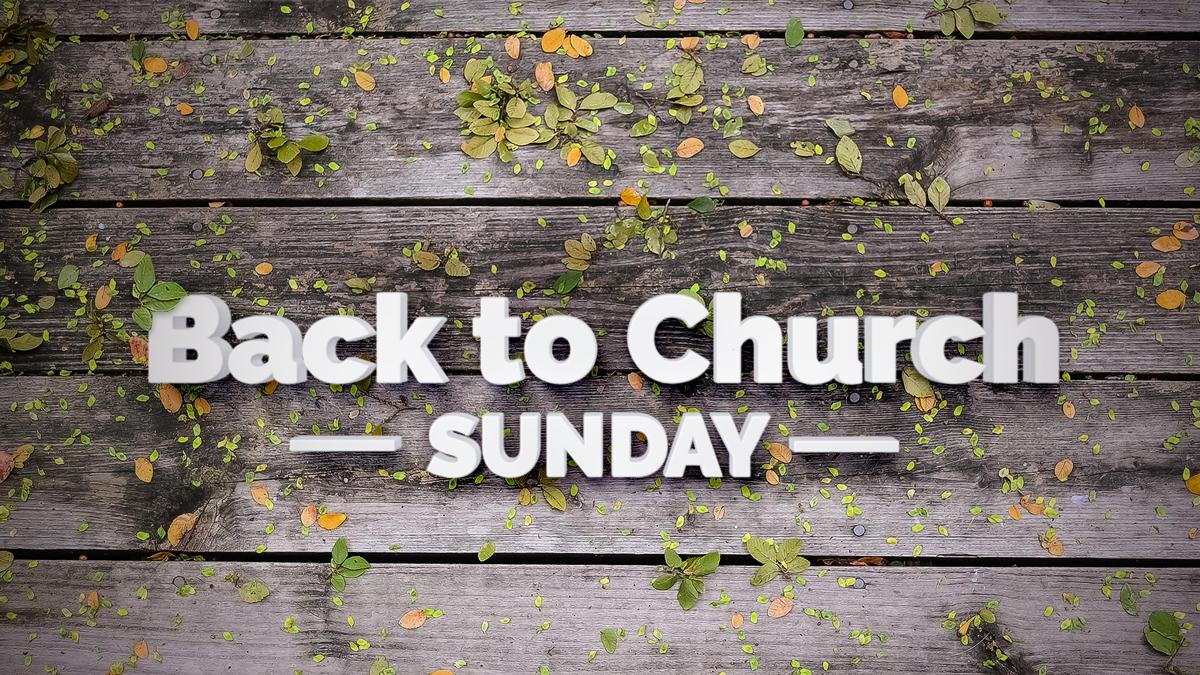 Back To church Sunday